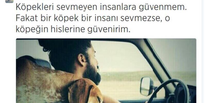 Hayvan sevgisi Türkiye rekoru kırdırdı