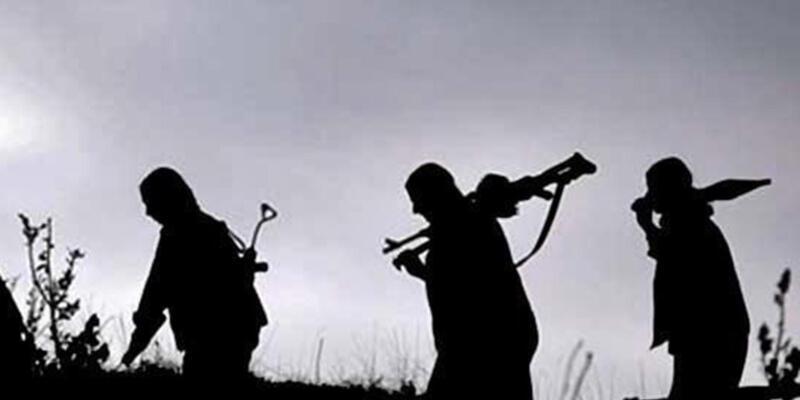 Şırnak'ta 11 PKK'lı teslim oldu