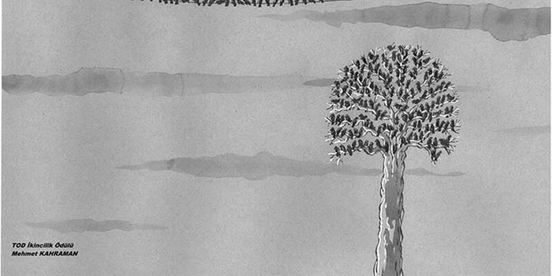 Doğa Koruma karikatür ödülleri sahiplerini buldu