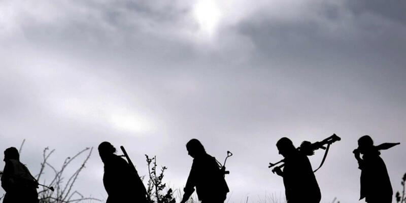Diyarbakır'da yakalanan 2 üst düzey PKK'lıya dava açıldı