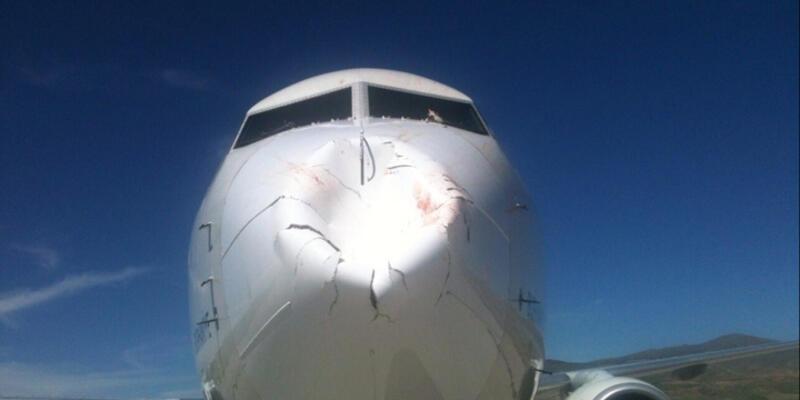 THY uçağına kuş sürüsü çarptı, hasar meydana geldi