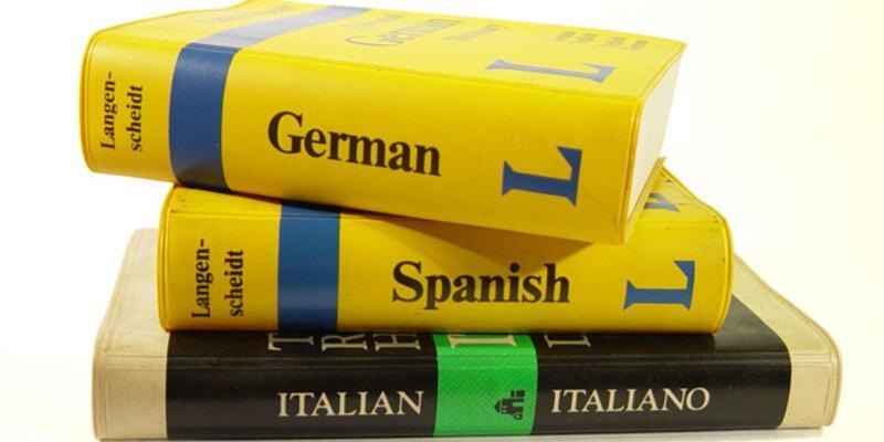 Çeviri hizmetleri pazarı 200 milyon doları aştı