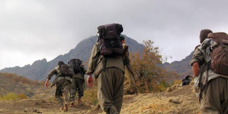 Yüksekova'da 1 kişi PKK'lılar tarafından kaçırıldı