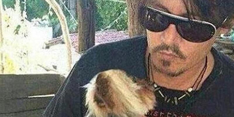 Johnny Depp'in köpekleri Avustralya'da kriz çıkardı