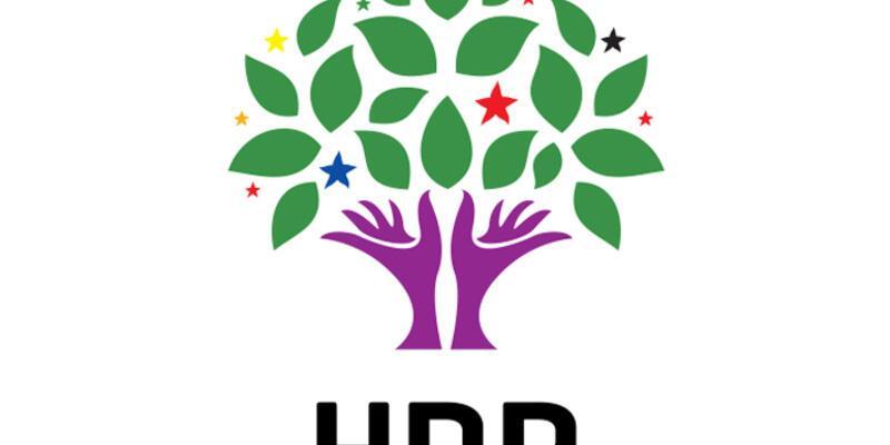 HDP seçim startını verdi