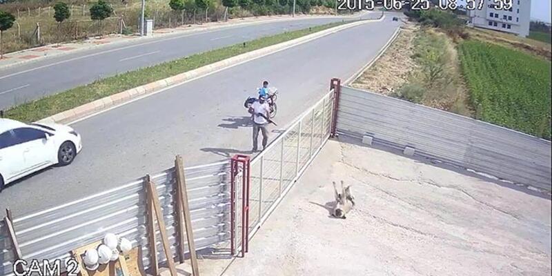 Tüfekle köpek öldürene 1002 lira para cezası