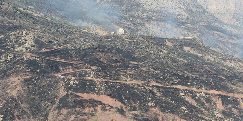Ormanlar yandı