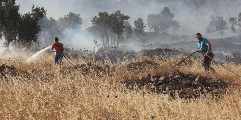 Cudi Dağı'ndaki yangın söndürüldü
