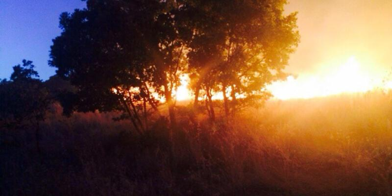 Diyarbakır'da orman yangınları
