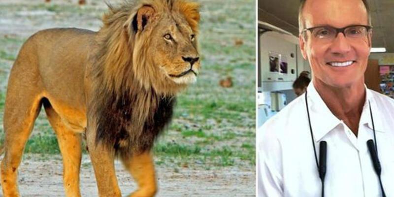 Aslan Cecil'i öldüren Amerikalı dişçiye tepki yağıyor