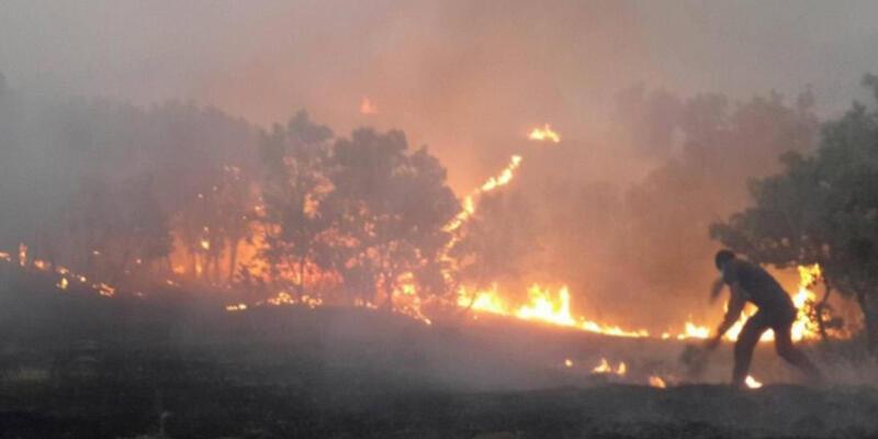 Diyarbakır-Lice yangınları Meclis'e taşındı