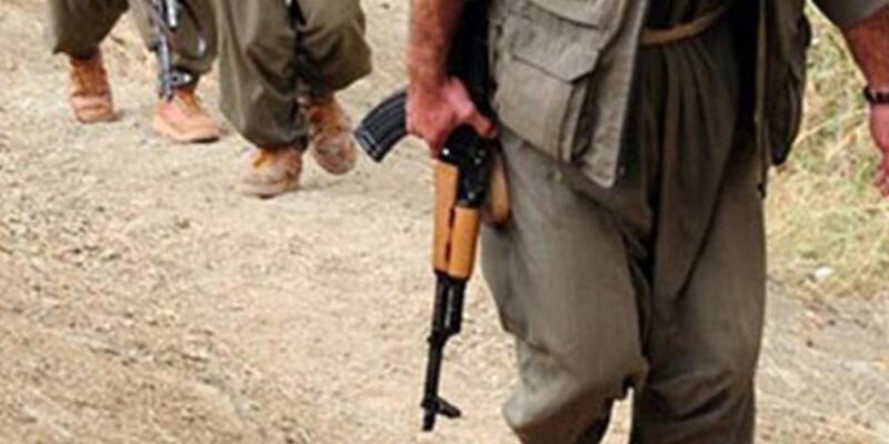 PKK, Ağrı, Muş, Bingöl'de karakola taciz ateşi açtı, Diyarbakır'da TIR yaktı
