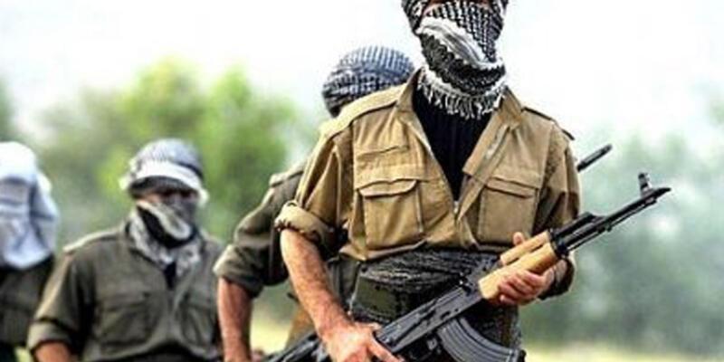 Van'da 12 kişiyi PKK mı kaçırdı?
