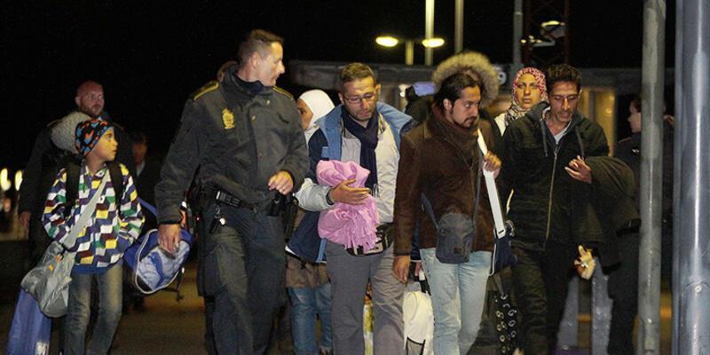 Mülteciler Danimarka sınırında