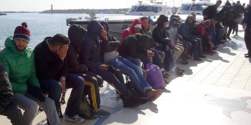 Ayvacık'ta 275 kaçak yakalandı