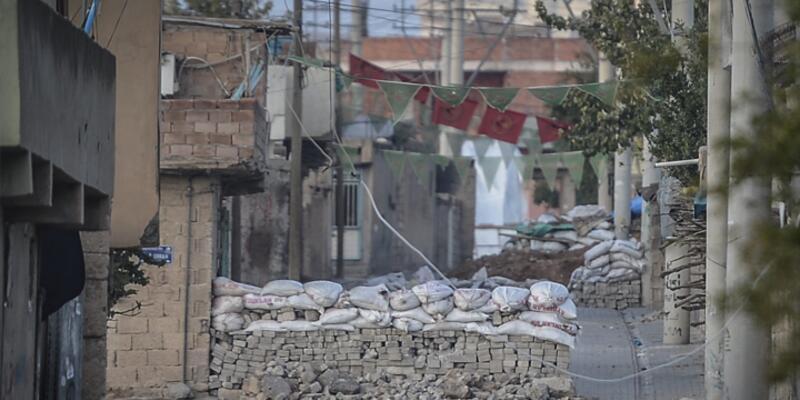 HDP'li iki milletvekili Nusaybin'de açlık grevine başladı