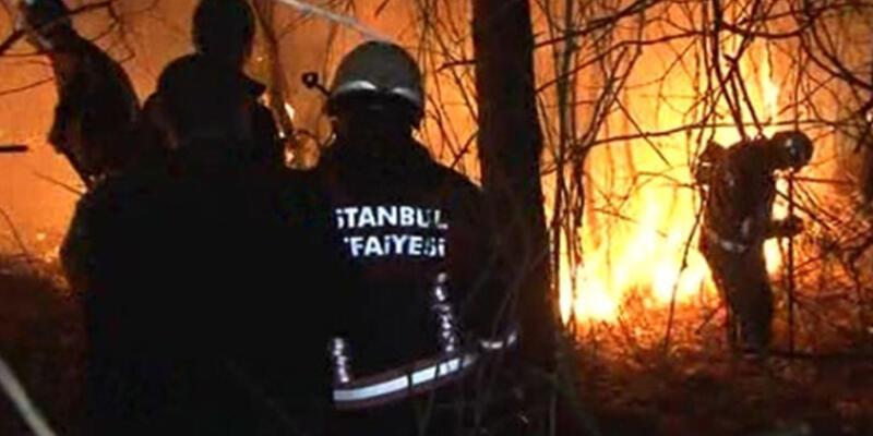 Beykoz'da orman yangını!