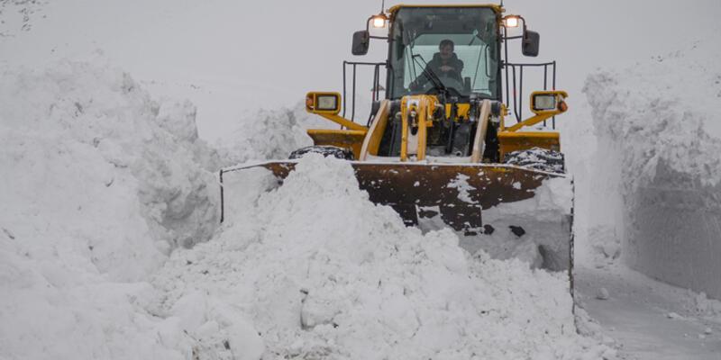 Kar Muş'ta yolları kapattı