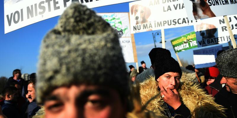 Hükümet köpek sayısını sınırlayınca Romanya'da çobanlar meydanlara çıktı