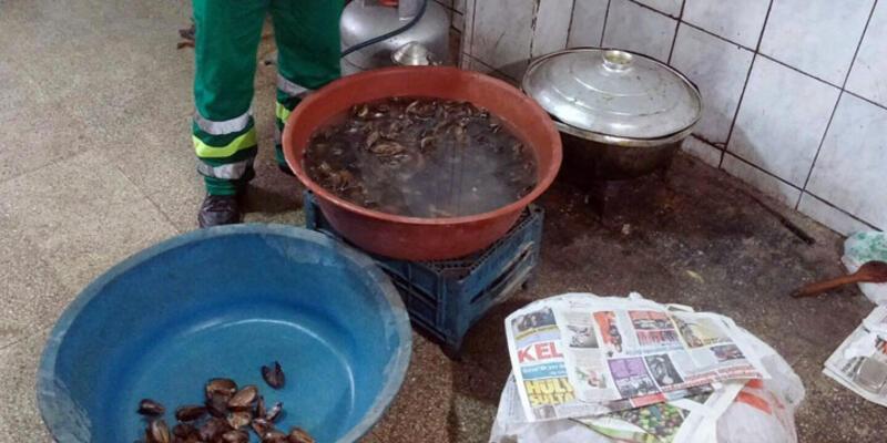 Beyoğlu'nda midye dolma operasyonu