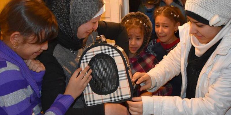 Iraklı sığınmacı aile kedisine Norveç'te kavuştu