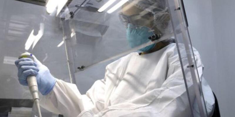 Bilim adamları Zika virüsünün DNA dizilimini keşfetti