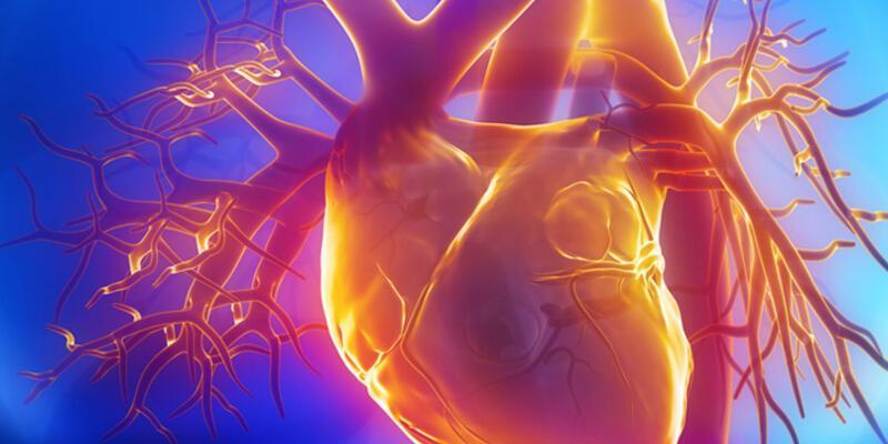 Kalp ve damar hastalıkları çocukluktan başlıyor
