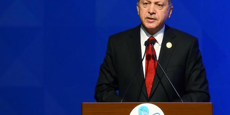 Erdoğan'ın restinden sonra AB alternatif arayışında