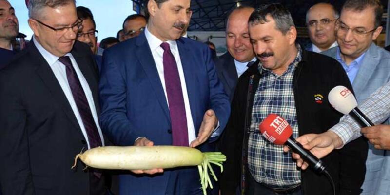 Bakan Çelik'ten mecliste kavga eden milletvekillerine turplu gönderme