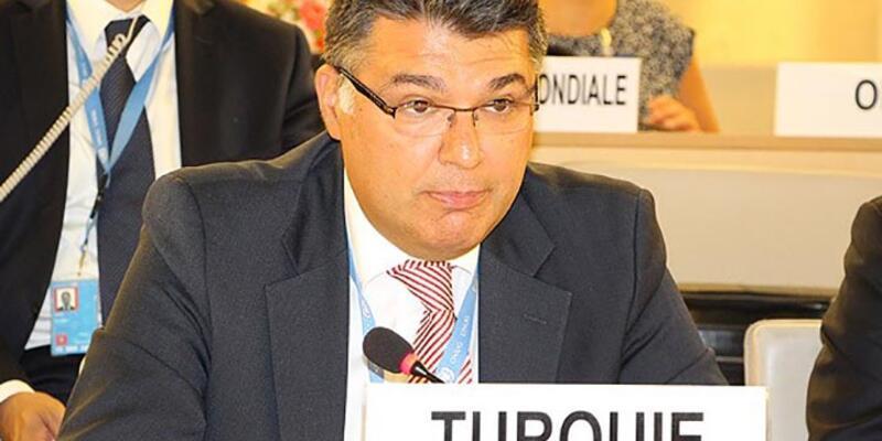 Türkiye'den, BM İşkenceye Karşı Komite'ye Osmanlı savunması