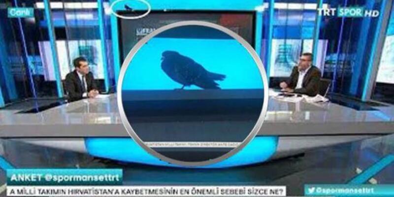 'TRT'ye talih kuşu kondu'