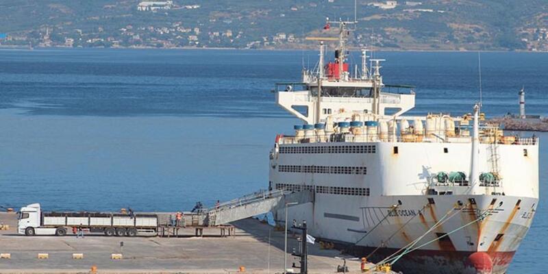Turist gemisiyle bu kez danalar geldi