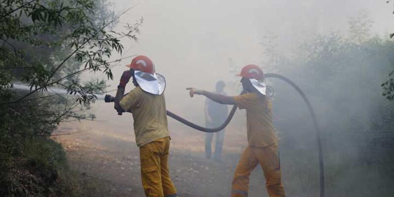Belek Turizm Bölgesi'nde orman yangını