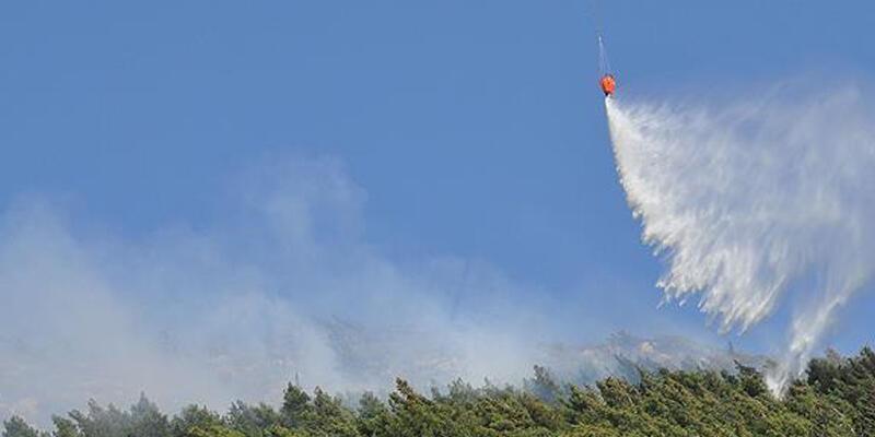 Kaş'ta orman yangını