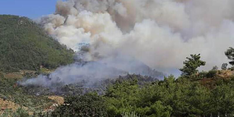 İzmir'in Seferihisar ilçesinde orman yangını