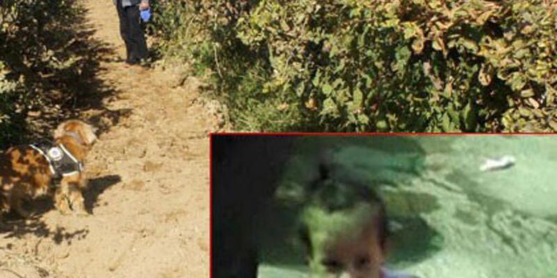 Irmak Kupal'ın cansız cesedi bulundu