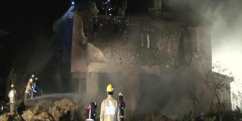 Riva'da 3 katlı bina yandı, çok sayıda hayvan telef oldu