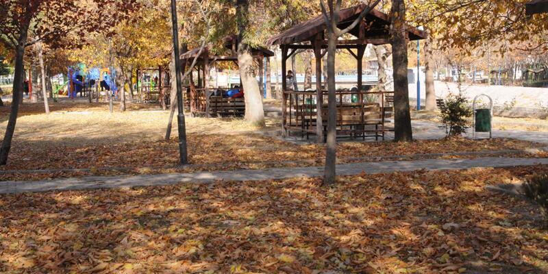 Tokat'ta 4 gün boyunca yapraklar süpürülmeyecek: işte nedeni...