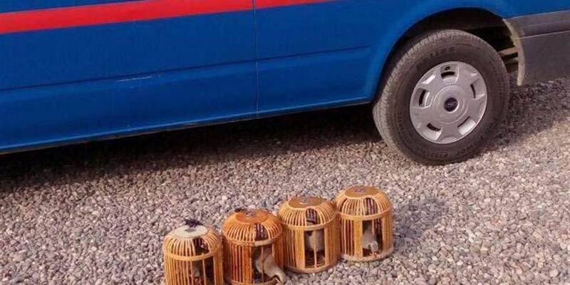 Tuzakla keklik avlayan 3 kişiye para cezası