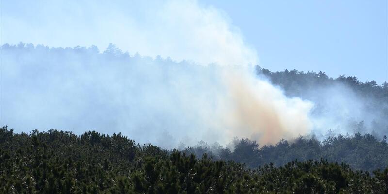 Ataşehir'de korkutan orman yangını