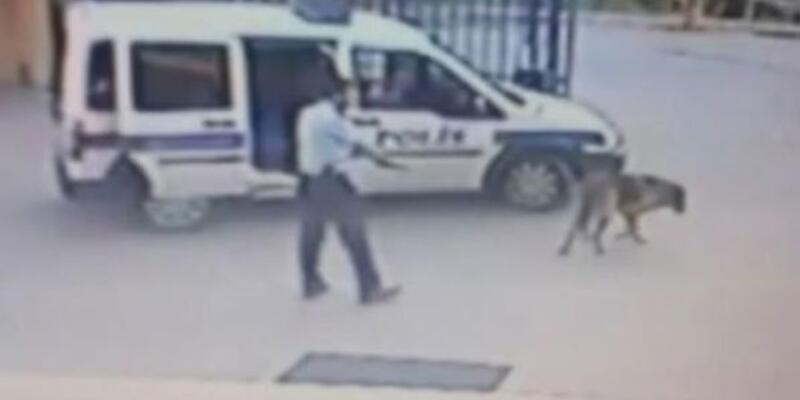 Köpeği vuran komiser FETÖ'cü çıktı, ihraç edildi