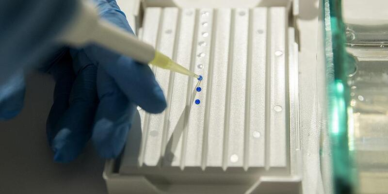 Altı ay içinde insanlar üzerinde test edilmeye başlayacak