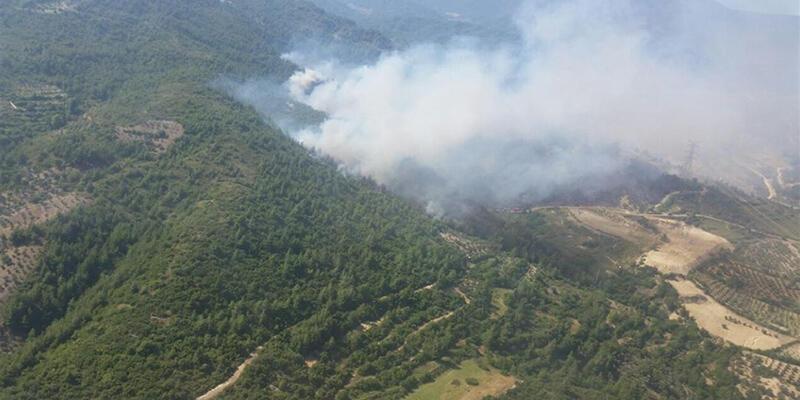 Yıldırım düşmesi sonucu 4 ayrı noktada orman yangını çıktı