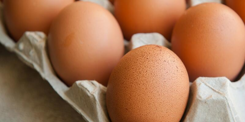 """Zehirli yumurta krizi siyasi kaynaklı"""