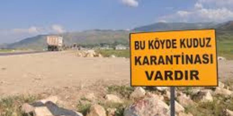 Kuduz vakası yaşandı, köy karantinaya alındı
