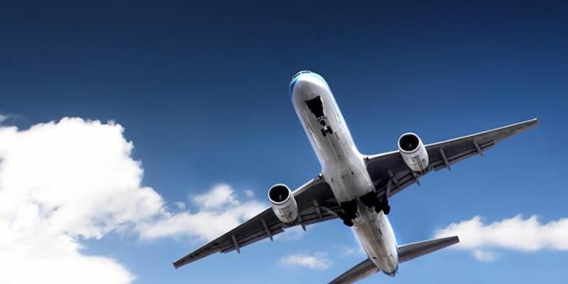 Uçak kuş sürüsüne çarptı, üç uçak pisti pas geçti