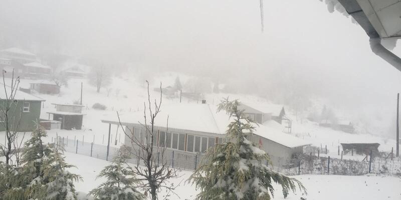 Sakarya'nın yüksek kesimlerine kar yağdı