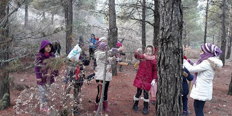 Öğrenciler ormanda ağaçlara kuş yemlikleri astı