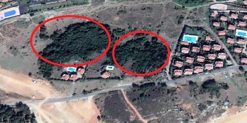 Şile'de 20 dönümlük ağaçlık alana TOKİ villa yapacak