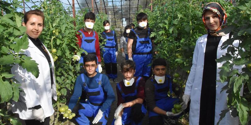 Okul bahçesinde seracılığı uygulamalı öğreniyorlar
